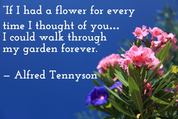 'If I had a flower for every time I thought of you... I could walk through my garden forever.' — Alfred Tennyson